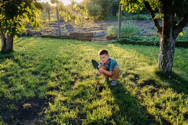Un lindo niño está plantando brotes en el jardín al atardecer. jardinería y agricultura.