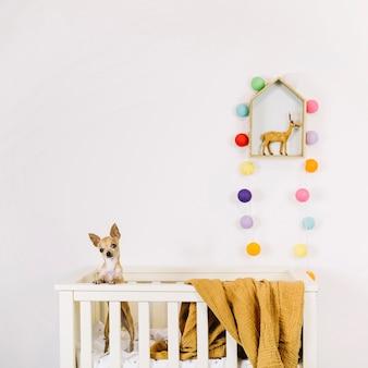 Lindo perro en cuna