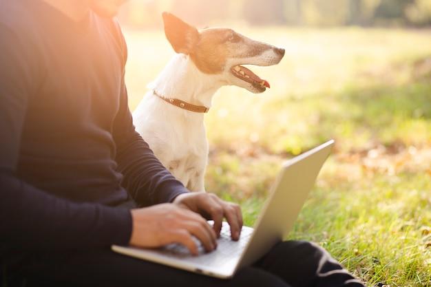 Lindo perro con dueño y laptop