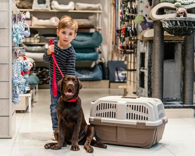 Lindo perro marrón en la tienda de mascotas