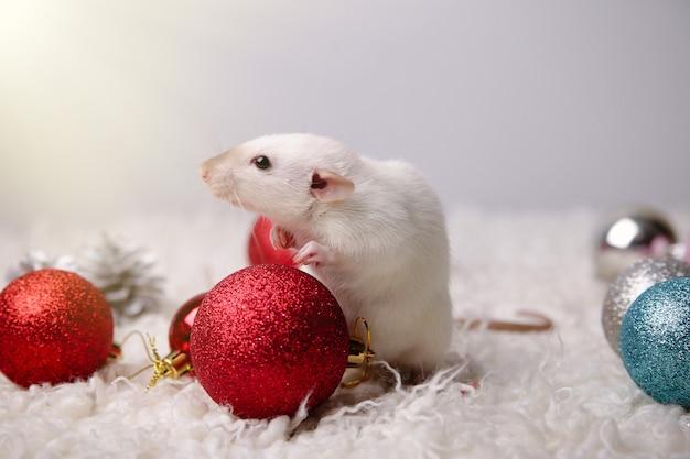 Lindo ratón sobre un fondo de año nuevo