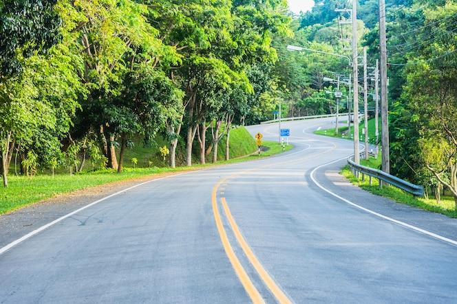 Línea amarilla de la carretera vacía