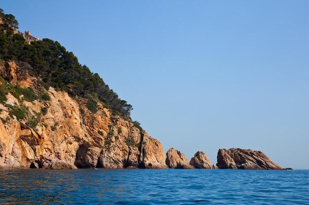 Línea de la orilla curvy con acantilados