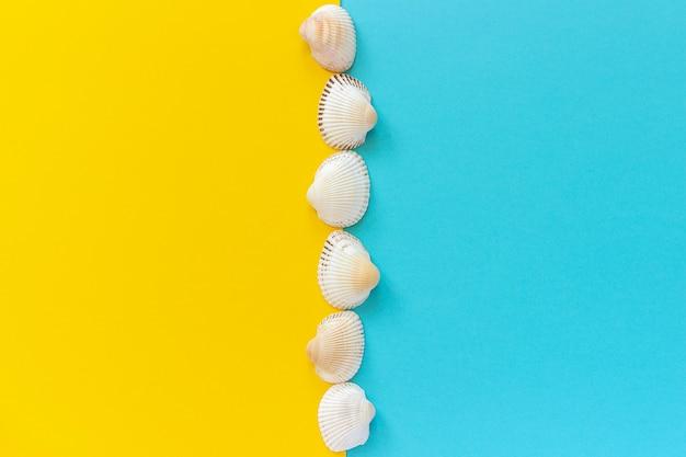 Línea vertical conchas marinas sobre fondo de papel de color amarillo y azul en un estilo minimalista