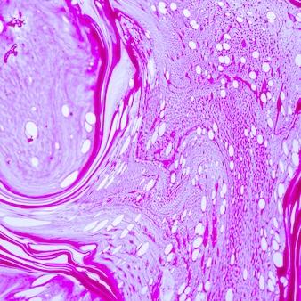 Líneas abstractas de violeta y puntos transparentes.
