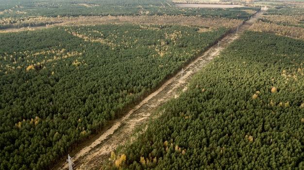 Líneas eléctricas de alto voltaje, iniciando sesión en la vista superior del bosque desde un avión no tripulado