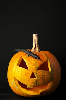 Linterna de jack de cabeza de calabaza de halloween sobre fondo negro.