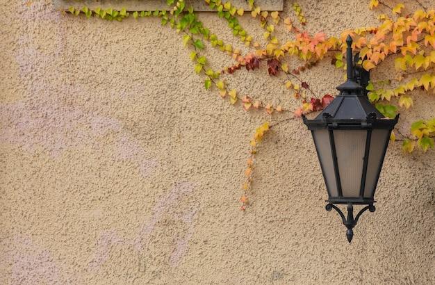 Linterna de pared y enredadera de virginia en la calle en temporada de otoño