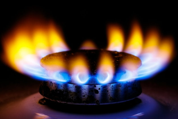 Llama alta de color amarillo azulado del quemador de gas de la estufa de la cocina en la oscuridad