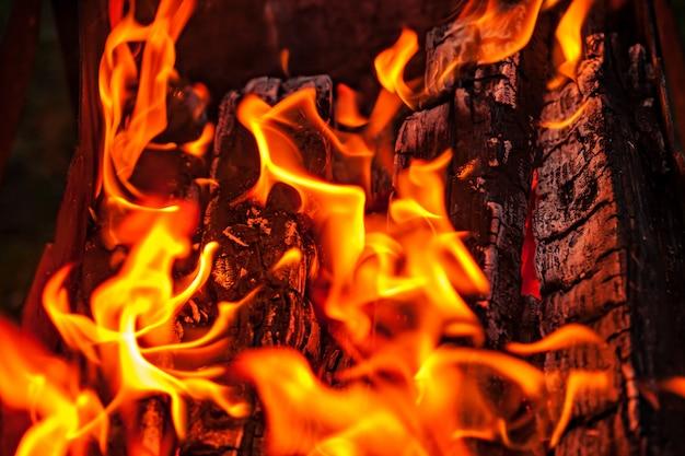 Llamas de fuego, troncos ardiendo