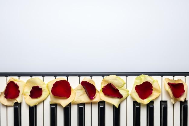 Llaves del piano con los pétalos de la flor de la rosa del rojo y del blanco, visión aislada, superior, espacio de la copia.