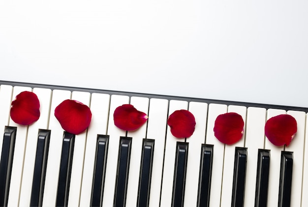 Llaves del piano con los pétalos de la flor de la rosa del rojo, visión aislada, superior, espacio de la copia.