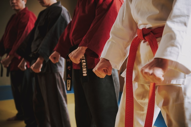 Luchadores de artes marciales en diferentes colores keikogi haciendo posturas juntos.