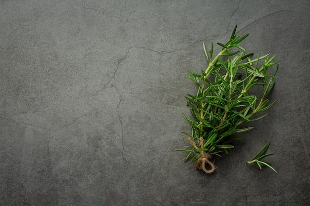 Lugar de plantas de romero en piso oscuro