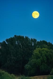 Luna llena amarilla en un cielo azul