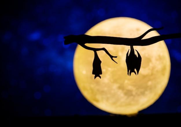 Luna llena en el cielo nocturno