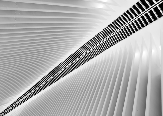 La luz de neón rápida moderna futurista