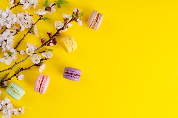 Macarrones dulces o macarrones decorados con flores florecientes de albaricoque en amarillo brillante
