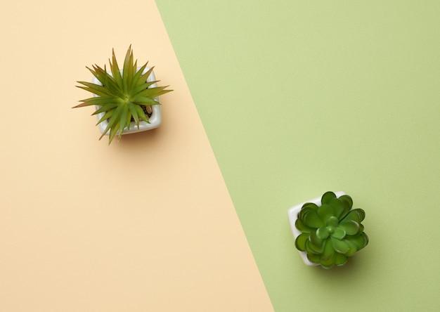 Maceta de cerámica con planta en crecimiento sobre un fondo verde