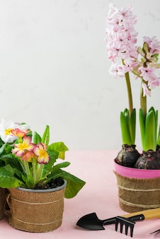 Maceta de flores y herramientas