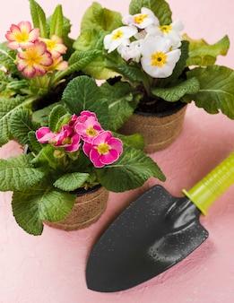 Maceta de flores con herramientas