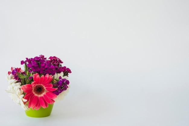 Maceta con hermosas flores