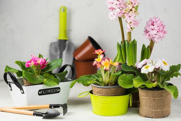 Macetas de flores en ángulo alto con herramientas