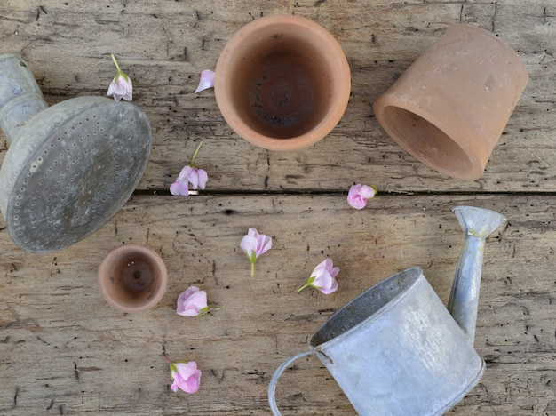 Macetas de terracota y lata de agua de metal en un tablero entre pétalos de flores