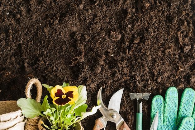 Macetas de turba; planta de pensamiento; herramientas de jardinería y guantes en el suelo