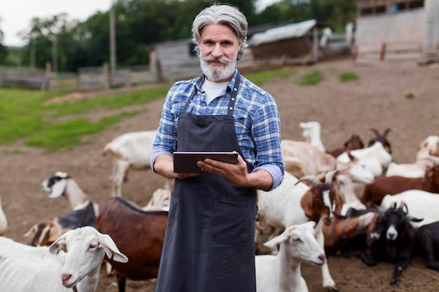 Macho en la granja mirando tableta
