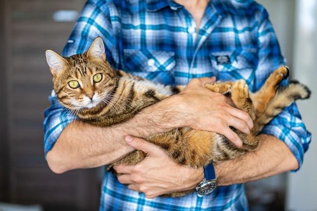 Macho joven sosteniendo un gato tigre de bengala en sus manos