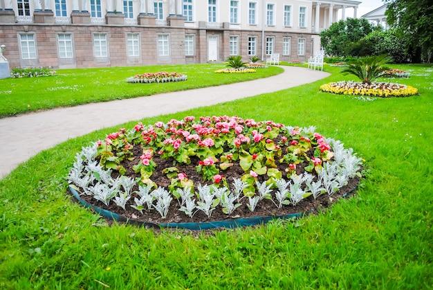 Macizo de flores de tsarskoye selo en san petersburgo