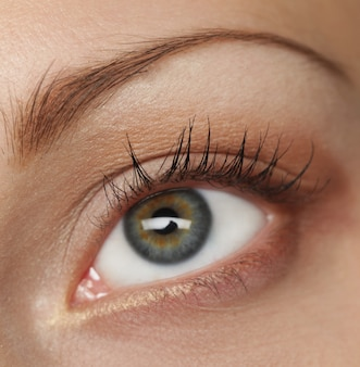 Macro imagen del ojo humano