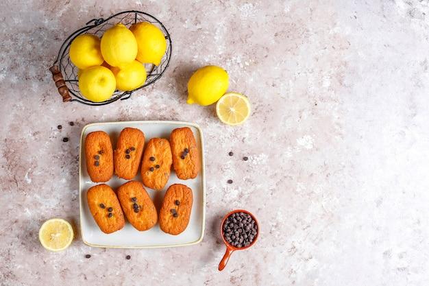 Madeleine: pequeñas galletas francesas tradicionales caseras con limón y chispas de chocolate.