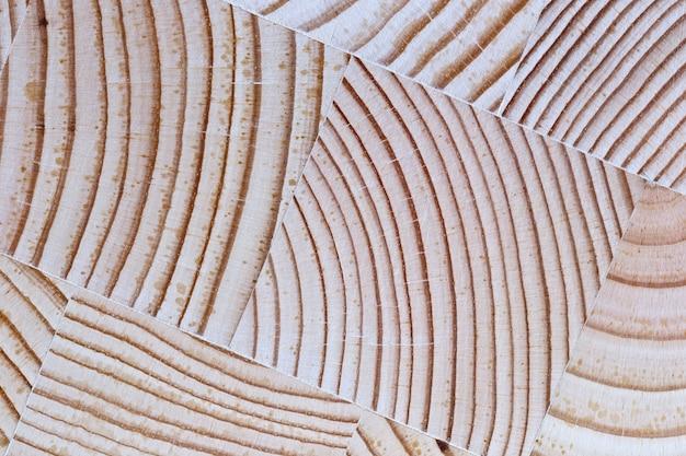La madera cortada con el fondo de textura y los anillos de crecimiento.