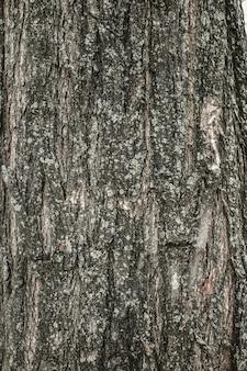 Madera teñida de construcción de pino tablón