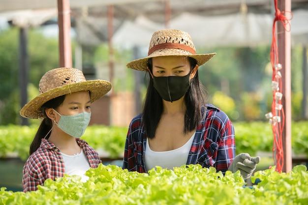 La madre asiática y la hija usan una máscara que están ayudando juntas a recolectar la verdura hidropónica fresca en la granja, el concepto de jardinería y la educación infantil de la agricultura doméstica en el estilo de vida familiar.
