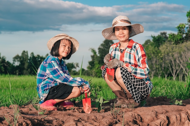 Madre e hijos plantando el árbol en tierra en campo de arroz y fondo de cielo azul