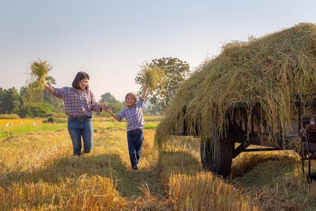 La madre del granjero y su hija en los campos de arroz con tractor después de la cosecha