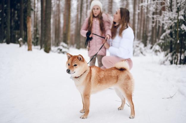 Madre joven de familia feliz y niña linda en ropa de abrigo rosa caminando divirtiéndose con el perro rojo shiba inu en el bosque de invierno frío blanco como la nieve al aire libre