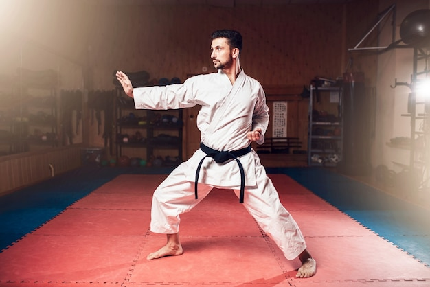 Maestro de artes marciales, cinturón negro, kárate
