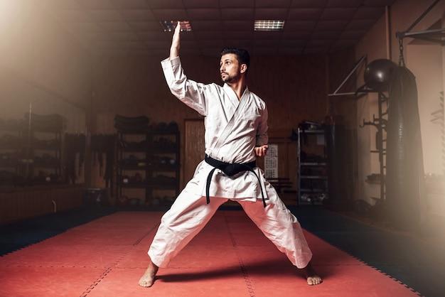 Maestro de artes marciales en entrenamiento de judo en gimnasio