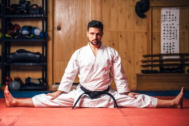 Maestro de artes marciales haciendo ejercicio de estiramiento