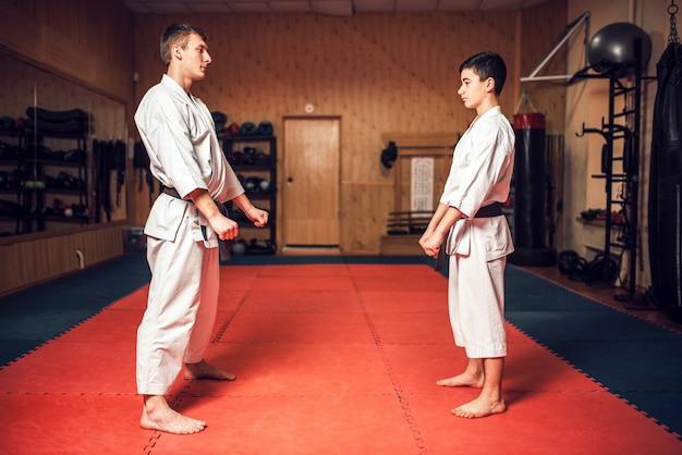 Maestro de artes marciales y joven discípulo