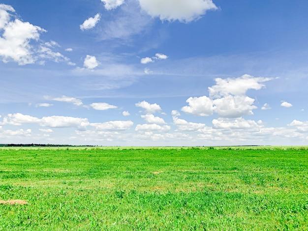 Mágicas nubes blancas aéreas profundas en el cielo azul y el campo verde.