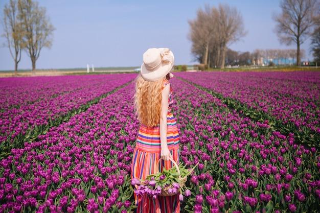 Mágico paisaje holandés.