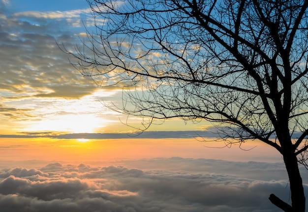 Majestuoso amanecer con mar de niebla