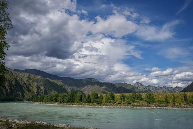 Majestuoso río katun rodeado de montañas rocosas, bancos boscosos contra un cielo azul con nubes blancas