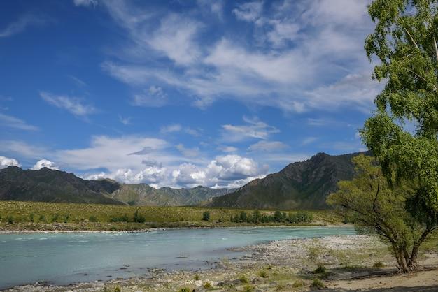Majestuoso río katun rodeado de montañas rocosas, bancos boscosos contra el cielo con nubes
