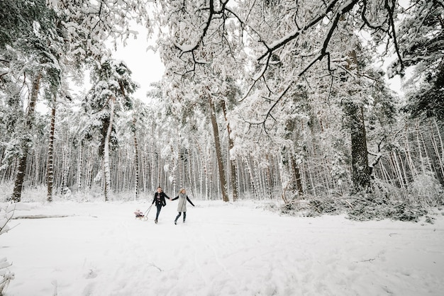 Mamá, papá corriendo, hija en trineo en el bosque de invierno.